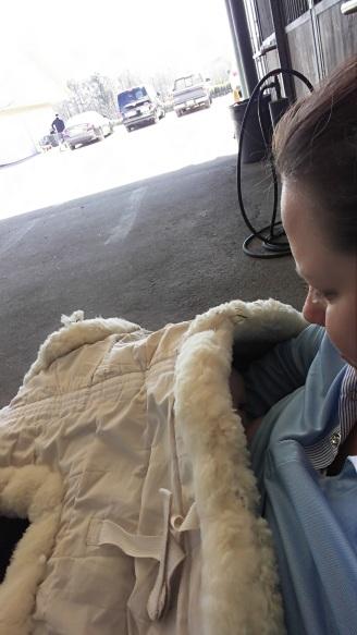 Feeding the baby in the barn isle.