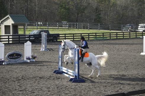 Poplar Place Farm owner Launa DesPortes doing her first Stadium round ever on her trusty fox hunter, Blue.